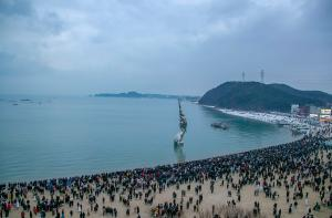 2020년 왜목 해돋이 행사(2020.01.01)