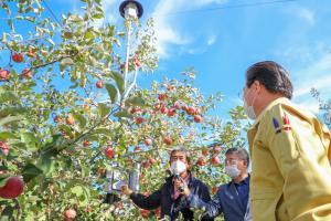 사과 시범사업 및 신품종 결과 평가회(2020. 10. 28)