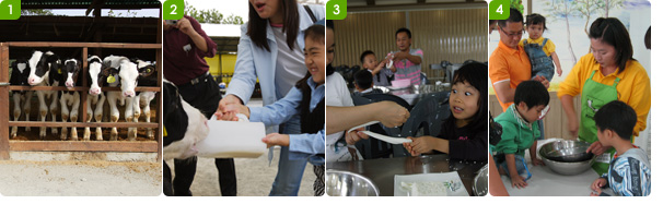 송아지 우유먹이기 체험장 /송아지 우유먹이기 체험을 하는 가족 / 치즈만들기 체험장의 모녀 / 아이스크림 만들기 체험장의 한가족